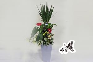観葉植物 約140cm×約55cm(高陶器)